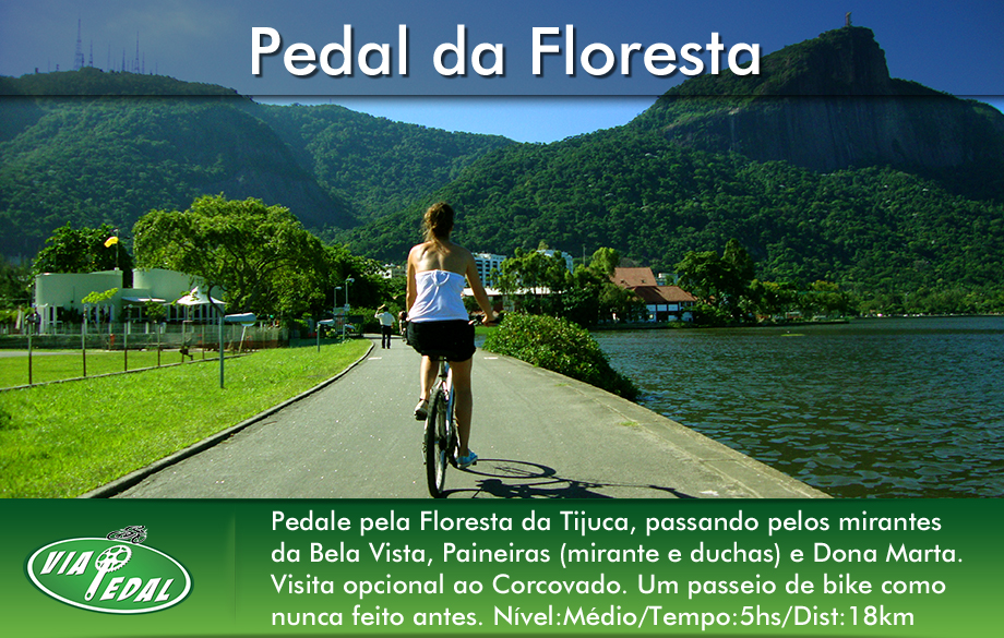 layout-banners-corcovado