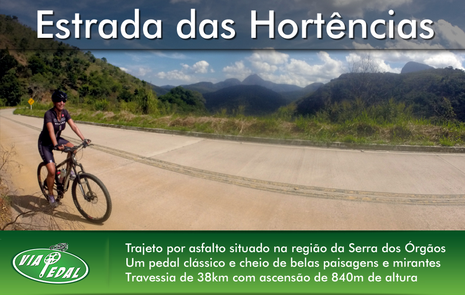 layout-banners-hortencias