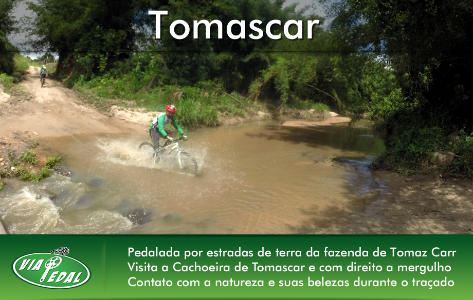 layout-banners-tomascar