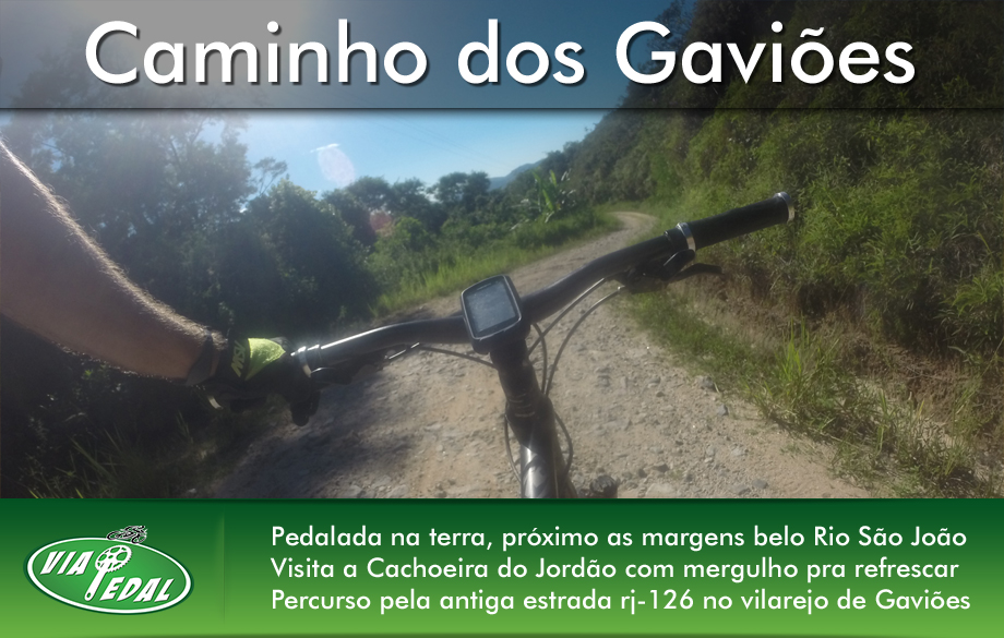 layout-banners-gavioes