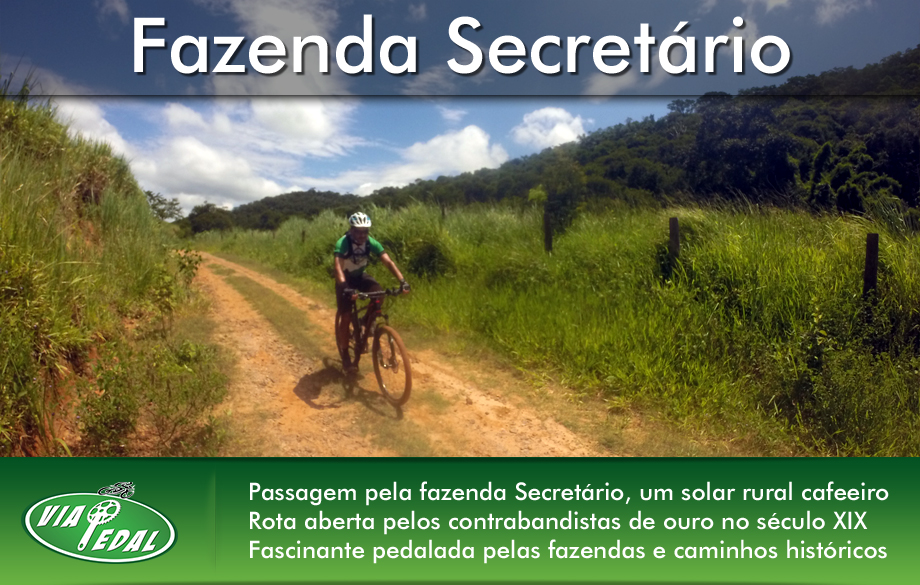 layout-banners-secretario